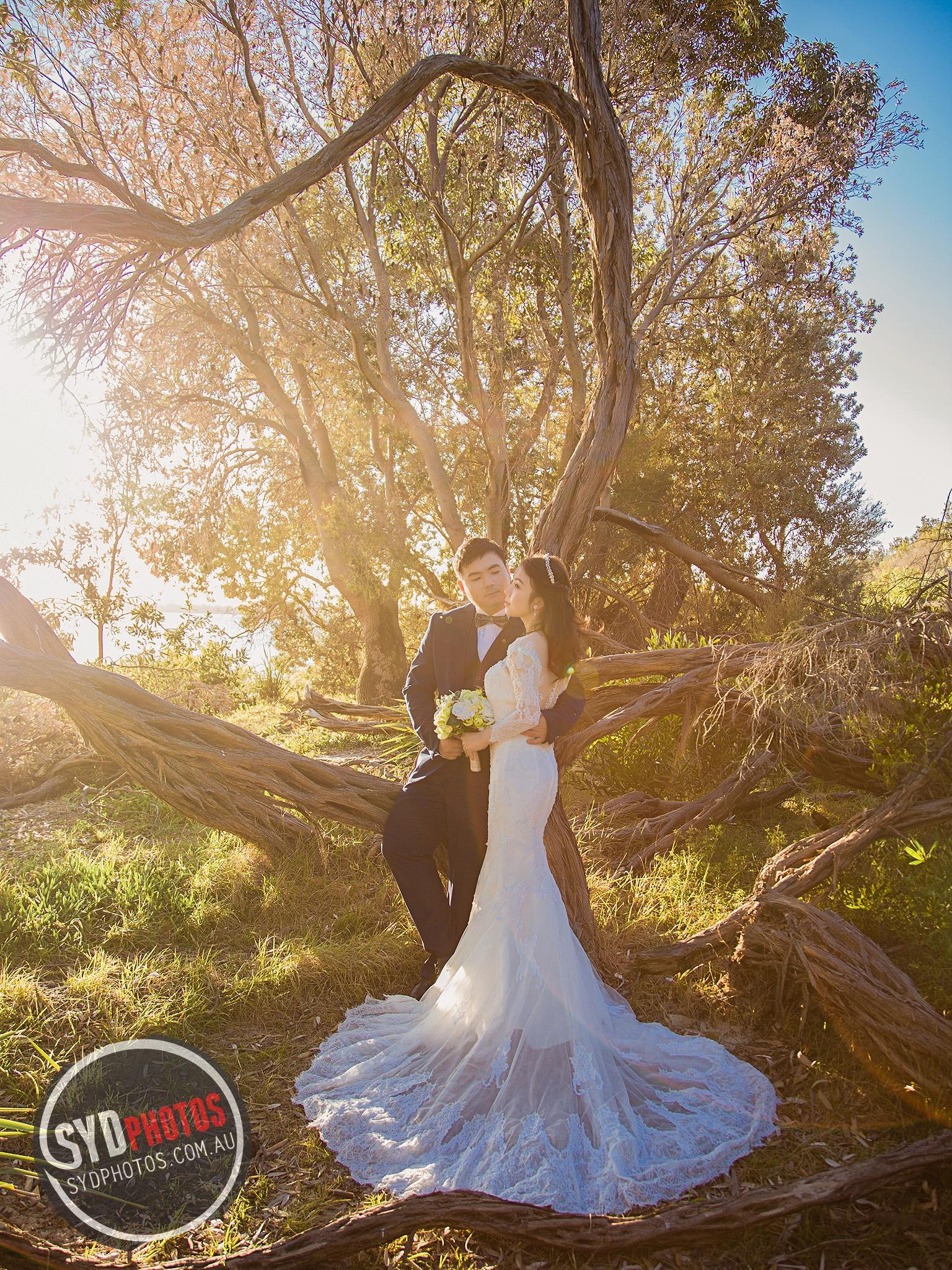 ID-111515-Chloe-Prewedding-悉尼婚纱摄影