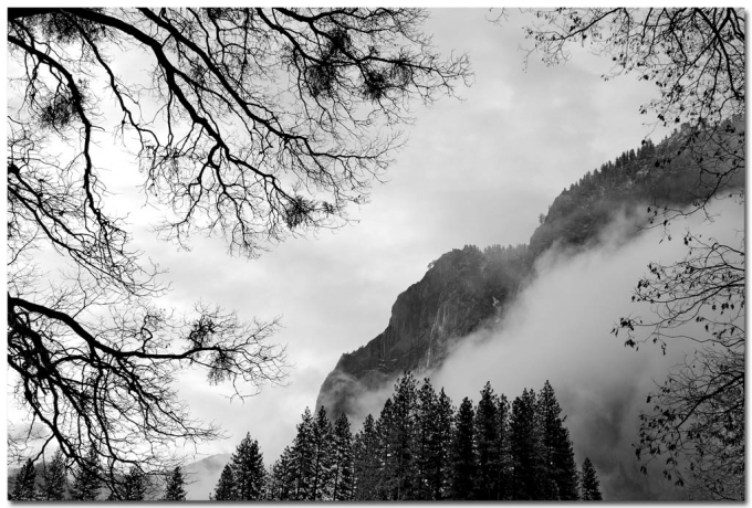 Yosemite National Park, CA, USA, DSC_0820.jpg, By Member Heng, Created on 05 Jan 2011, SYDPHOTOS Photography all rights reserved.