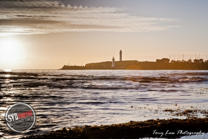 IMG_5267.jpg, By Photographer Tonylaw128, Created on 11 Jan 2012, SYDPHOTOS Photography all rights reserved.