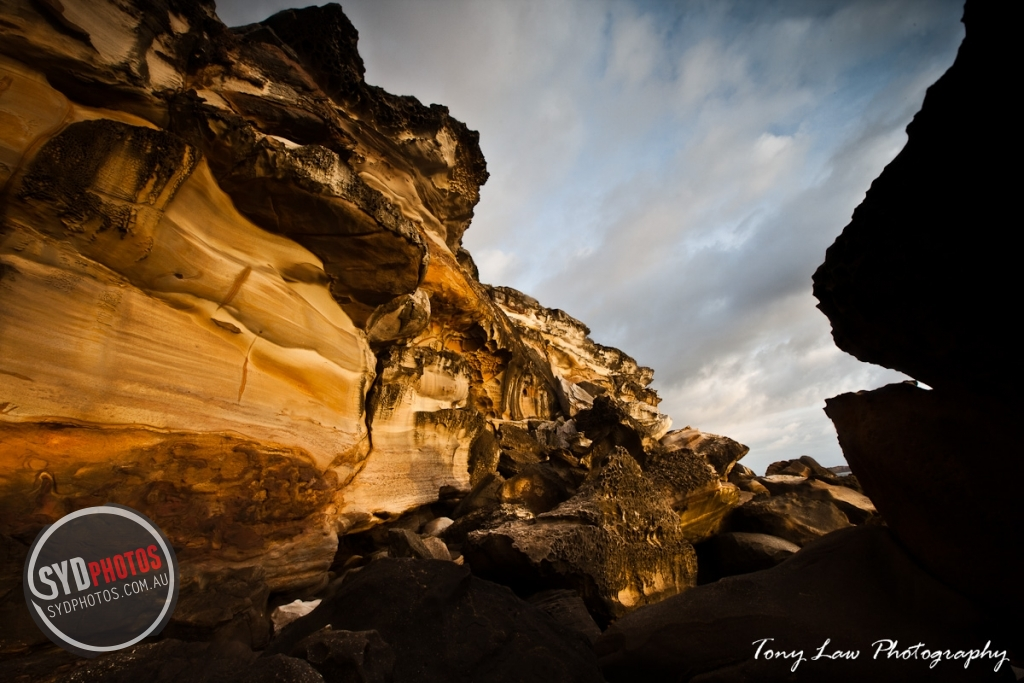 IMG_5644.jpg, By Photographer Tonylaw128, Created on 31 Jan 2012, SYDPHOTOS Photography all rights reserved.