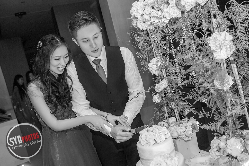 F_0305.jpg, By Photographer Sydphotos.wedding, Created on 24 Jun 2015, SYDPHOTOS Photography all rights reserved.