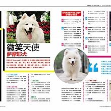 搶先預覽版:《SYDPHOTOS潮流先鋒時尚雜誌》2015 第三季,總111期|Animals