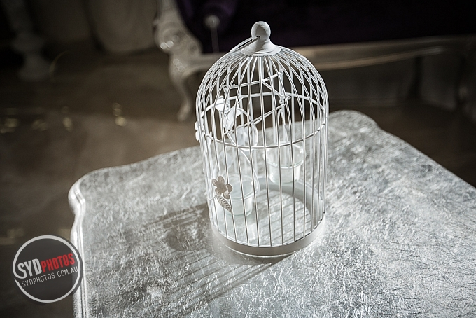 Birdcage (Item-0012), By Photographer Wedding.Plan, Created on 20 Apr 2016, SYDPHOTOS Photography all rights reserved.