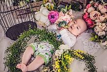 悉尼孕妇照,宝宝百天照,家庭摄影,儿童摄影,宝宝写真,家庭相册