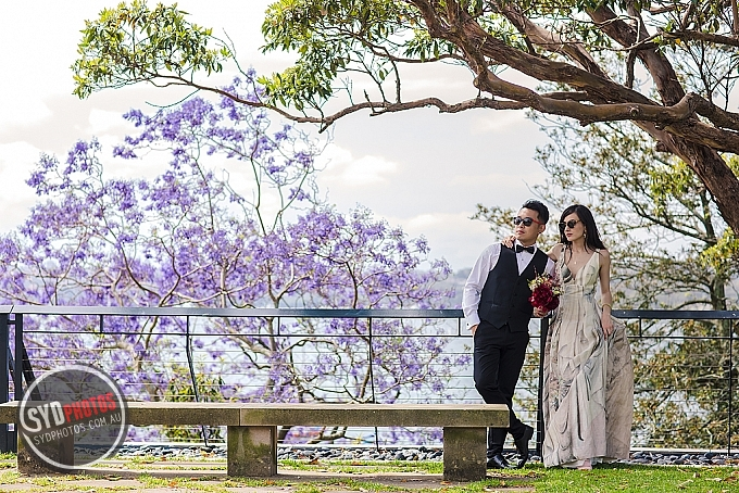 _HS_1210.jpg, By Photographer Sydphotos.wedding, Created on 13 Dec 2016, SYDPHOTOS Photography all rights reserved.
