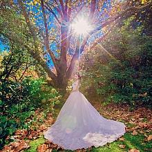ID-83850-Sherry-Pre Wedding-悉尼婚纱摄影|悉尼婚纱摄影