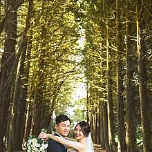 ID-87323-Jennifer Lee-Wedding-悉尼婚礼摄影|悉尼婚礼跟拍