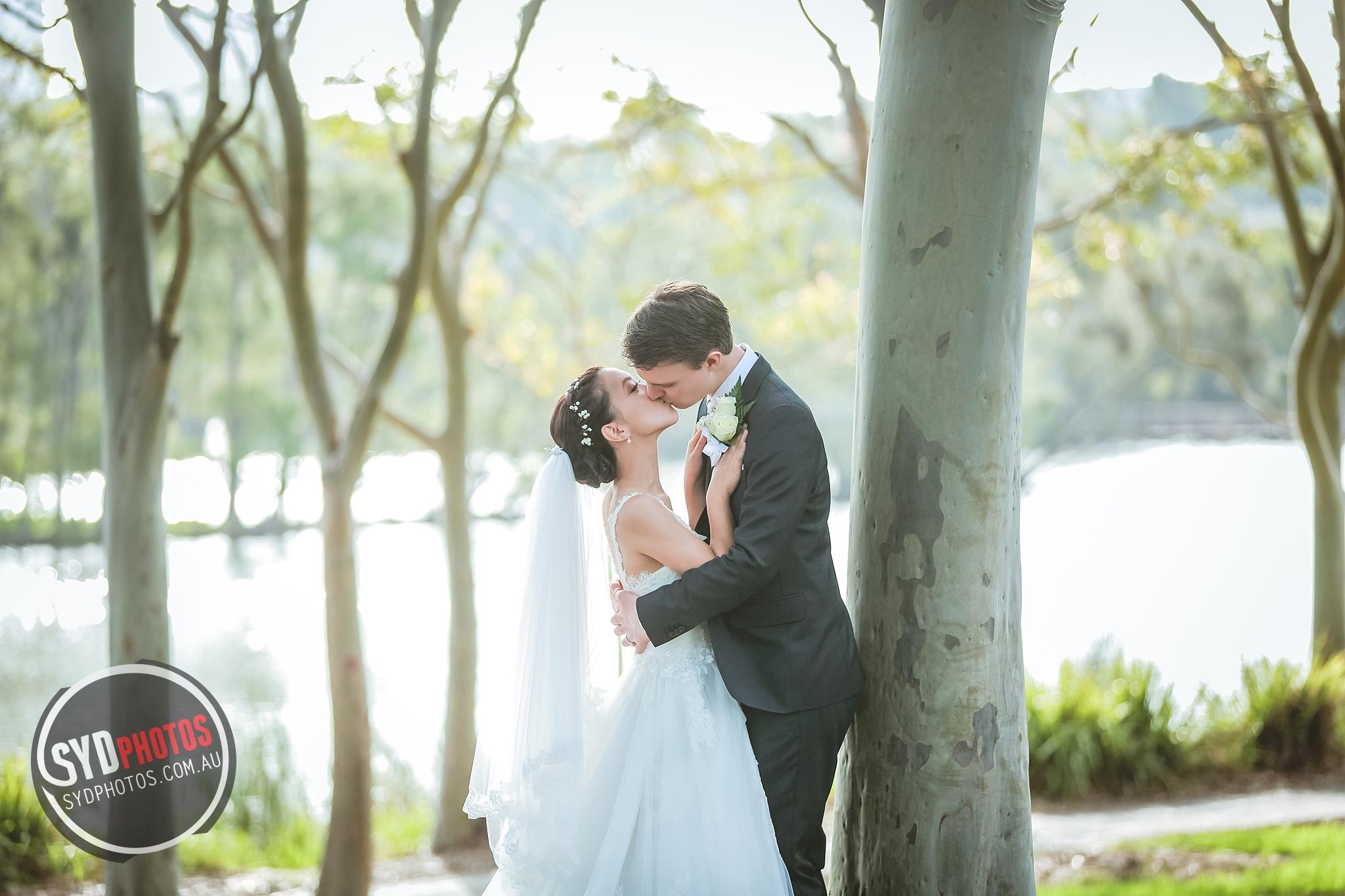 ID-94185-Cathy-Wedding-悉尼婚礼摄影