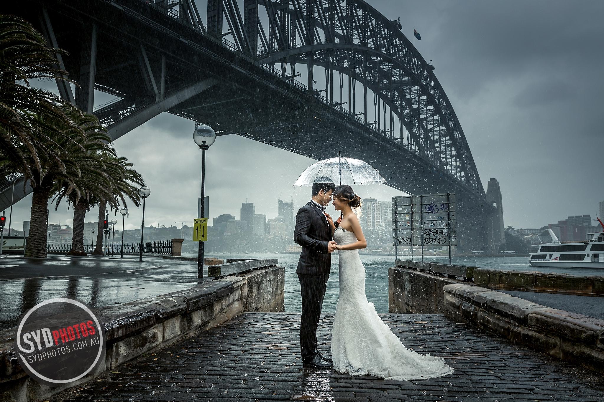 ID-104470-武小姐-Prewedding-悉尼婚纱摄影