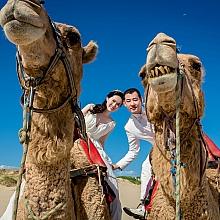 ID-92871-yolanda-Prewedding-悉尼婚纱摄影 全球热恋旅拍