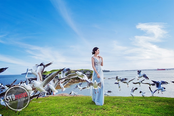 ID-81317-徐小姐-Prewedding-悉尼婚纱摄影