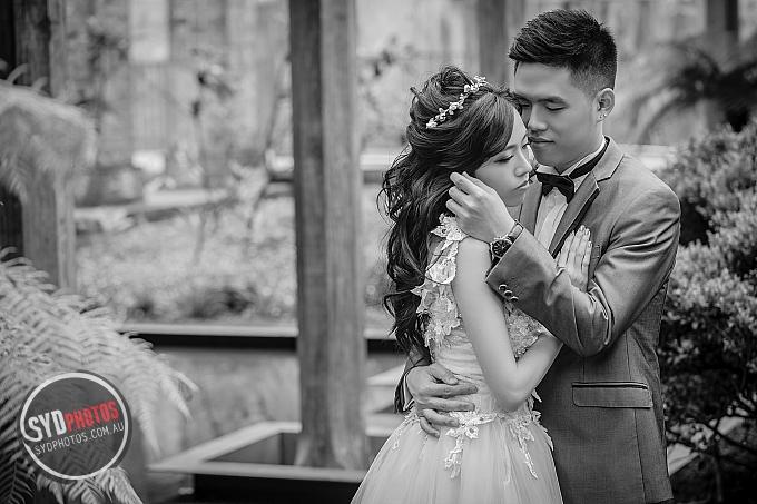 ID-102618-Sam-Prewedding-悉尼婚纱摄影