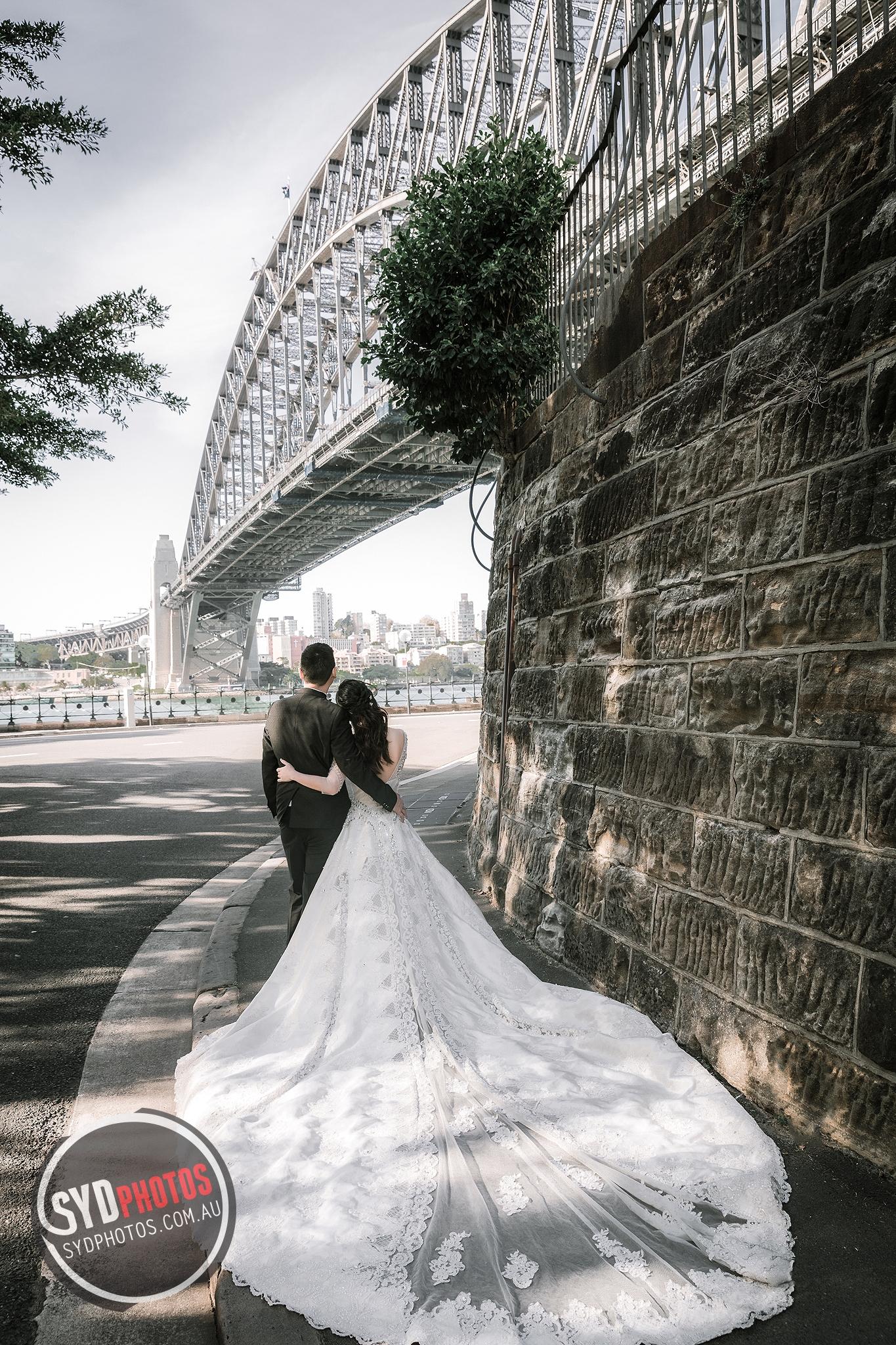 ID-108919-kotin-Prewedding-悉尼婚纱摄影